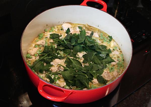 Easy-One-Pot-Easy-Pasta-Chicken-Alfredo-Primavera-Dinner-Recipe-5